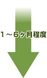 jikohasan_yajirushi1